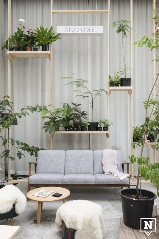 jardin-botanique-studiomie-01jpg