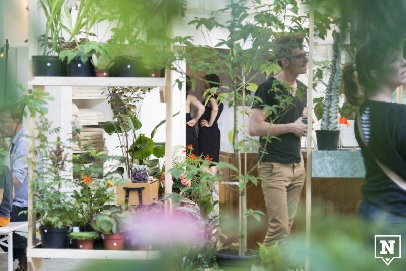 Chambre Botanique