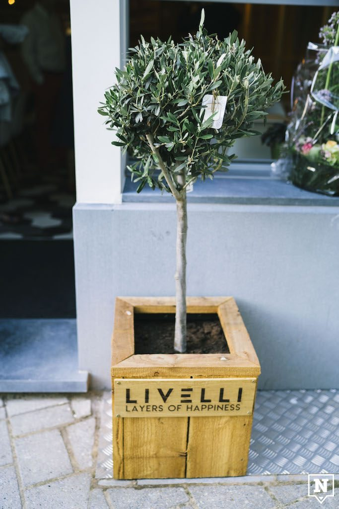 Livelli